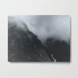 Shrouded View Metal Print