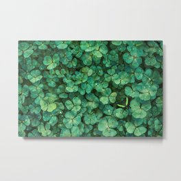 Lucky Green Clovers, St Patricks Day pattern Metal Print