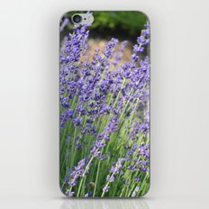 Lavender Wave iPhone & iPod Skin