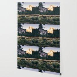 Yosemite Valley Buck Wallpaper