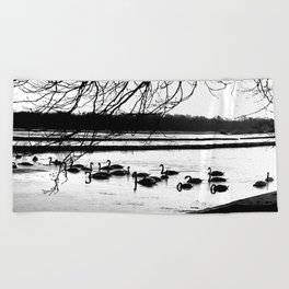 Swans in wintertime in the North of theNetherlands Beach Towel