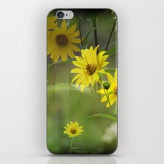 Yellow Flower Field iPhone & iPod Skin