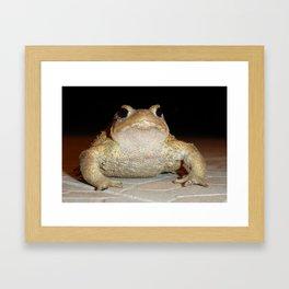 Common European Toad Framed Art Print