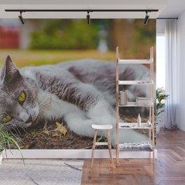 Cat by Seb Thomas Wall Mural