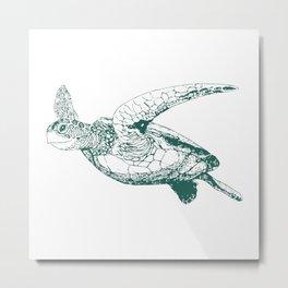 Kemp's Ridley Sea Turtle Metal Print