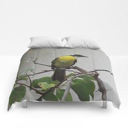 Chichen Itza Bird Comforters