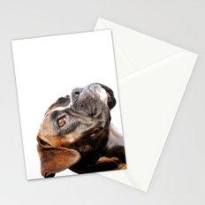 boxer dog portrait Stationery Cards