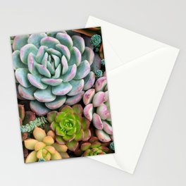 Colorful Succulent Garden Stationery Cards