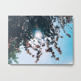 A PRETTY DAY IN MAY Metal Print