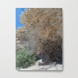 Tree to the Hot Springs Metal Print