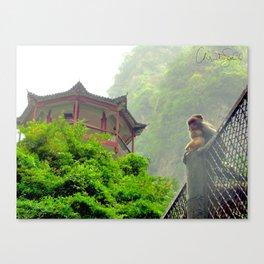 Monkeys in China Canvas Print