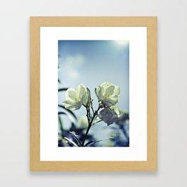 sunkissed honeysuckle Framed Art Print