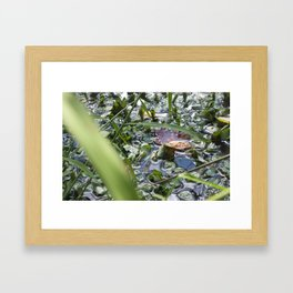 Autumn surface Tension Framed Art Print