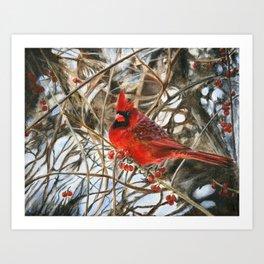 Winter Cardinal by Teresa Thompson Art Print