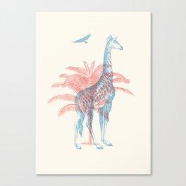 Giraffe - Where they Belong Canvas Print