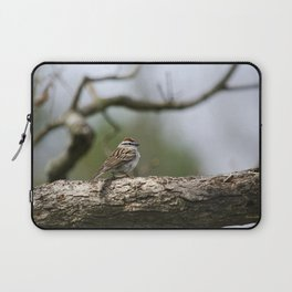 Sparrow in Tree Laptop Sleeve