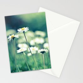 daisy Stationery Cards