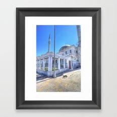 Istanbul Mosque Cat Framed Art Print