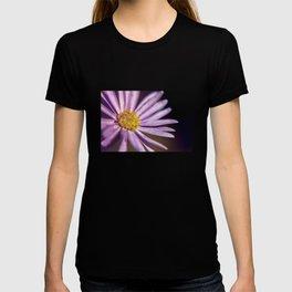 Chevreul's Law of Simultaneous Contrast T-shirt