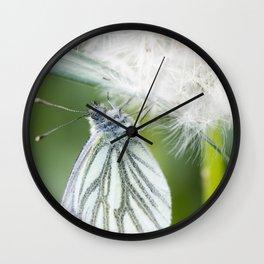Butterfly dandelion Wall Clock