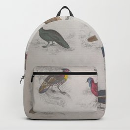 Gall Birds, 325 Backpack