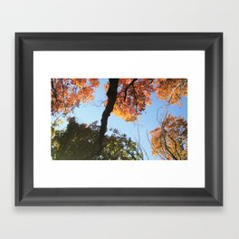 take a HIKE ☺ Framed Art Print