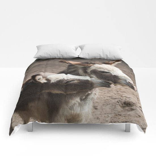 The donkeys Comforters