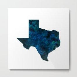 Texas Metal Print