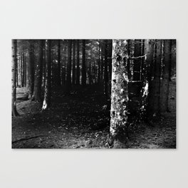 Forest Dark IX Canvas Print
