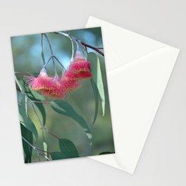 Eucalyptus Silver Princess Blossoms V Stationery Cards