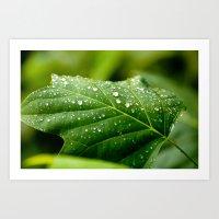 sprinkles Art Prints featuring Sprinkles by Bill Nash