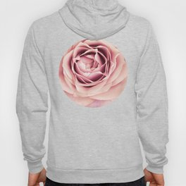My Heart is Safe with You, My Friend - pale pink rose macro Hoody