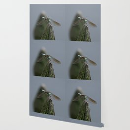 Launch Pad Wallpaper