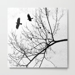 Crows Flying Birds in Tree Branches Black on White Metal Print