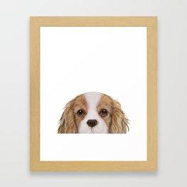 Cavalier King Charles Spaniel Dog illustration original painting print Framed Art Print
