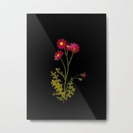 Senecio Elegans Mary Delany Vintage British Floral Flower Paper Collage Black Background Metal Print