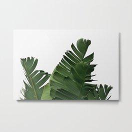 Minimal Banana Leaves Metal Print