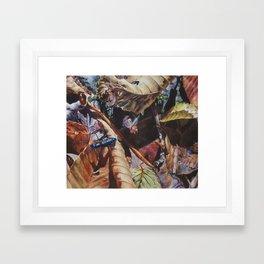 A Walk at Big Ivy Framed Art Print