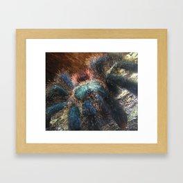 Greenbottle Blue Tarantula Framed Art Print