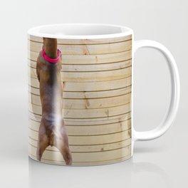 Outdoor portrait of a red miniature pinscher dog Coffee Mug