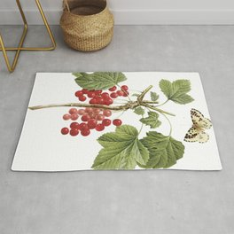 Botanical Print, Red Currant, Ribes Rubrum Rug
