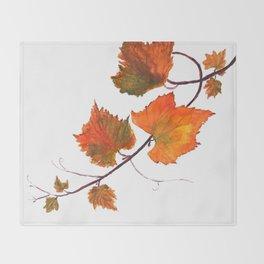 grapevine in autumn Throw Blanket