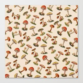 Magical Mushrooms Canvas Print