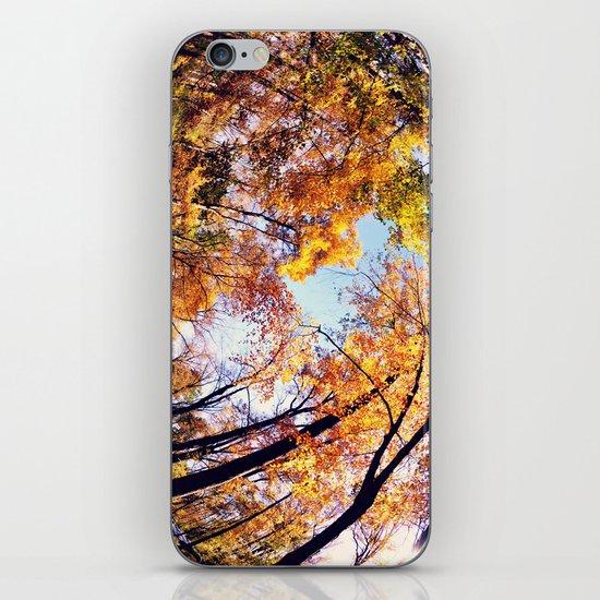 Fisheye Fall  iPhone & iPod Skin