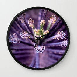 Purple Euphorbia in Detail Wall Clock