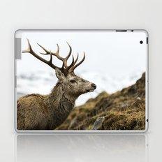Royal Red Deer Stag Laptop & iPad Skin
