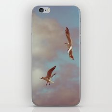 Seagulls iPhone & iPod Skin