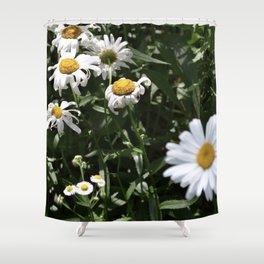 Spring Daisy Shower Curtain