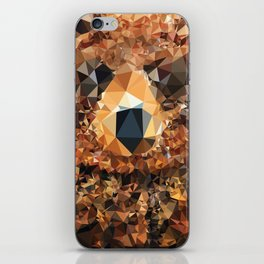 Crystal Bear iPhone Skin