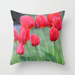 Ruby Red Tulips Throw Pillow